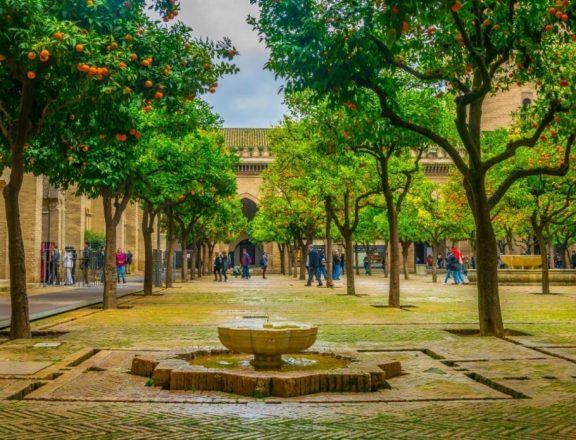 Люди, гуляющие по Патио де лос Нараньос (апельсиновый двор). Источник: trabantos / shutterstock.com