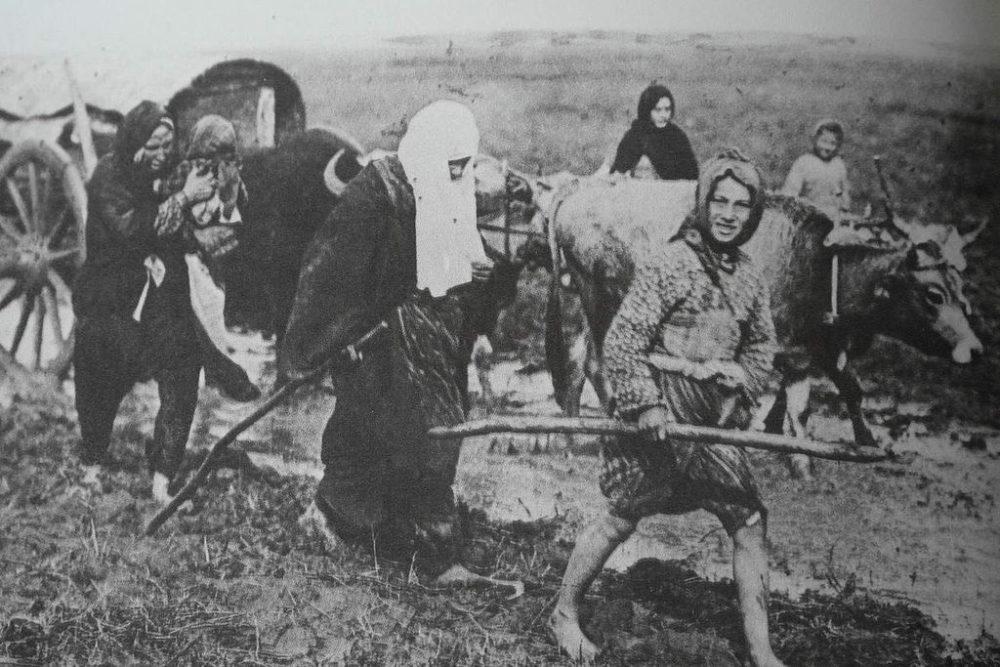 Трагическая участь мусульман на Балканах: геноцид и безразличие Европы